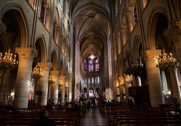 Insurance Payout 'A Drop in the Ocean' for Notre Dame Rebuild
