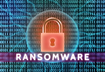 Ransomware Claims Are Roiling an Entire Segment of the Insurance Industry