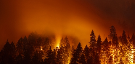California is Poised for a Catastrophic Fire Season, Emergency Funding Not Enough