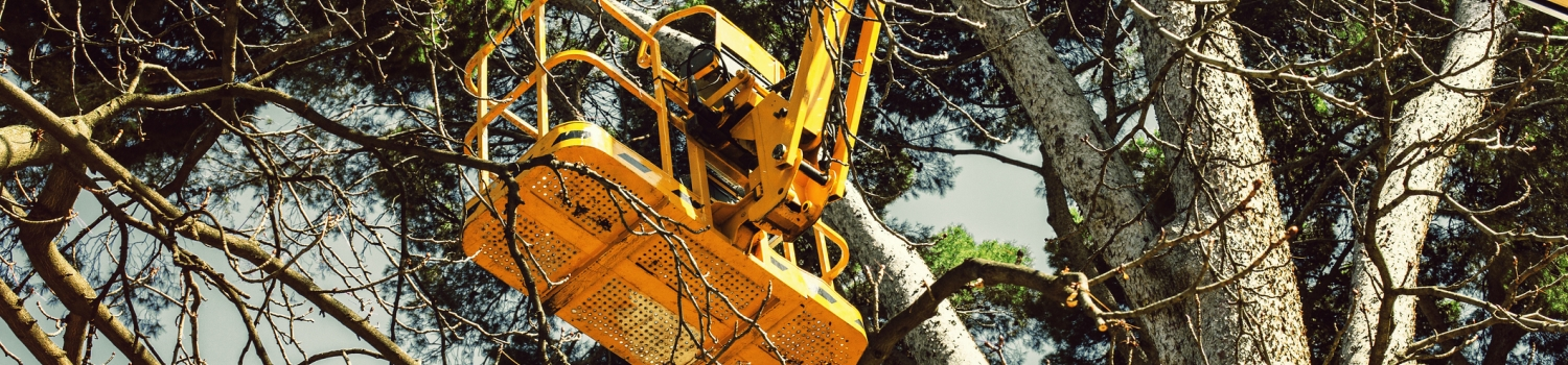 Image of Landscape bucket truck Landscape Contractors Insurance Services