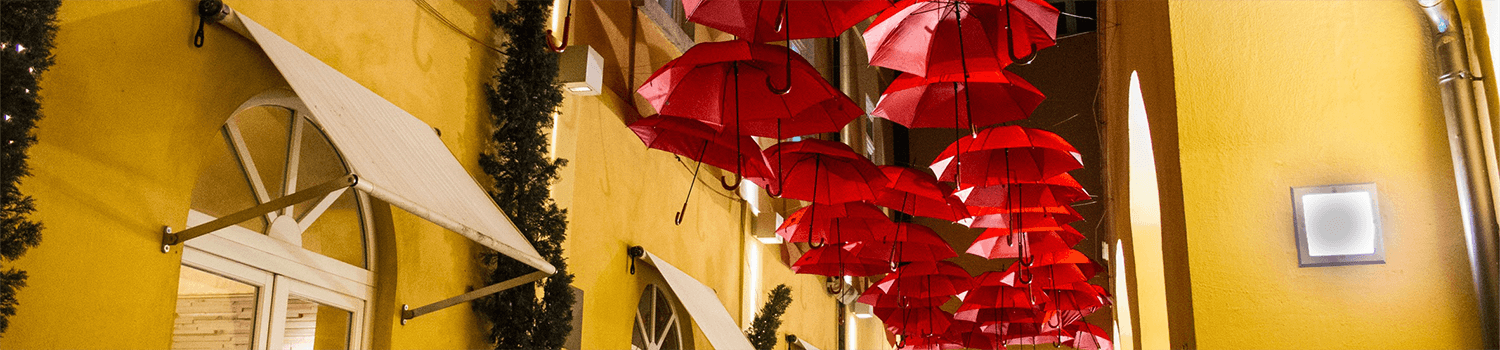 Umbrella and Excess Liability Insurance Program