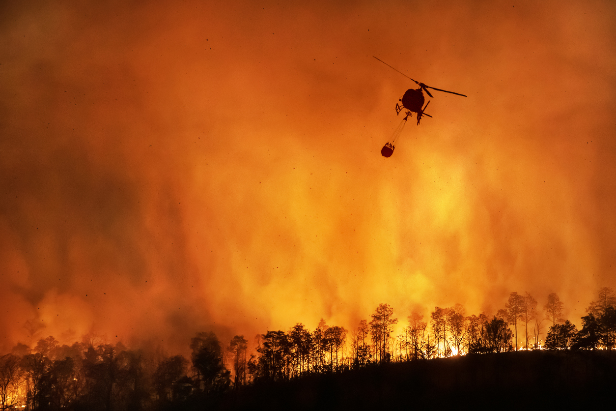 One-of-a-kind Lloyd's of London Wildfire Insurance Will Kick in for Oregon